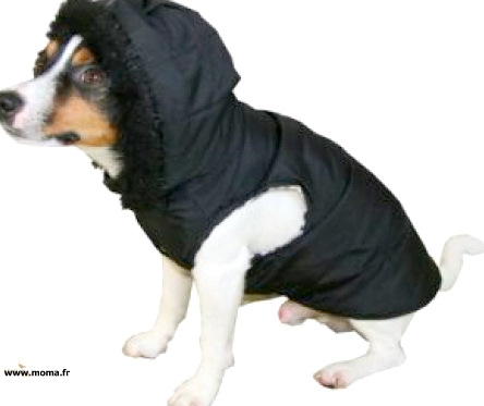 dog coat quilted assorted colors tail
