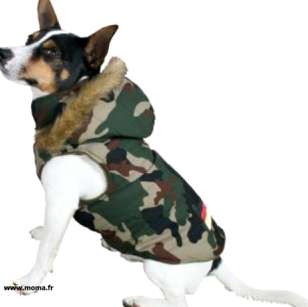 dog coat with hood size camouflage