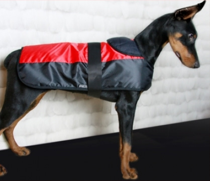 dog coat quilted tail assorted colors